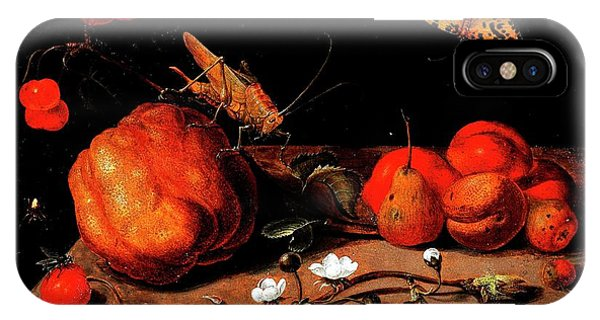 Still Life Fruit Grasshopper Butterfly IPhone Case