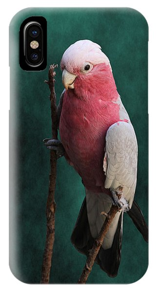 Stiltwalker - Roseate Cockatoo IPhone Case