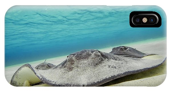 IPhone Case featuring the photograph Stingrays Under Water by Adam Romanowicz