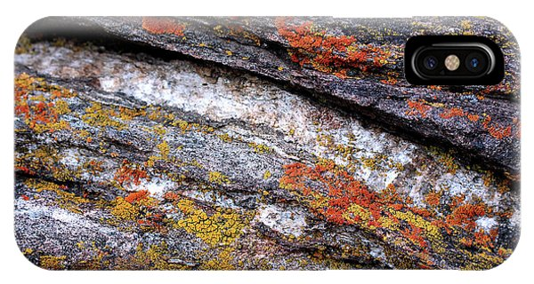 Stone And Lichen IPhone Case