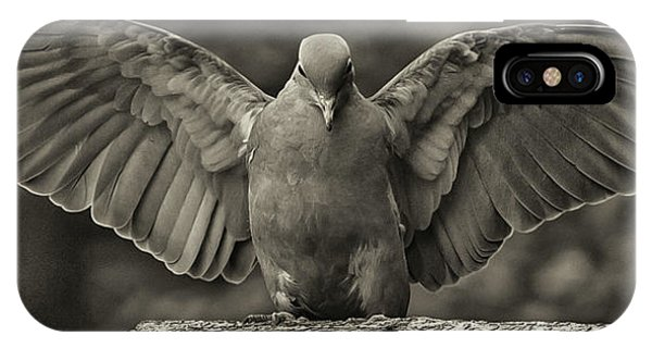 Stone Dove Landing IPhone Case