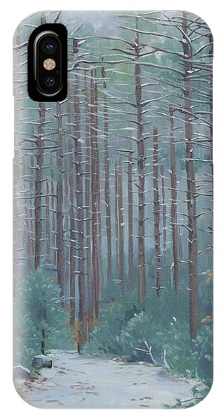 Stone Trail In Winter IPhone Case