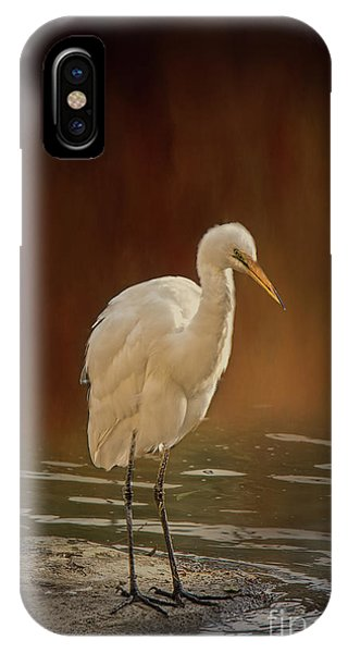 IPhone Case featuring the photograph Stork On A Rock by Elaine Teague