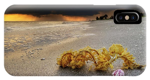 Storm And Sea Shell On Sanibel IPhone Case