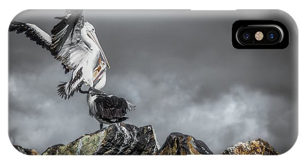 Storm Birds IPhone Case