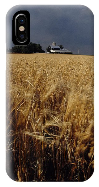 Storm Over Wheat Field  IPhone Case