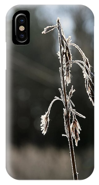 IPhone Case featuring the pyrography Straw In Backlight by Magnus Haellquist