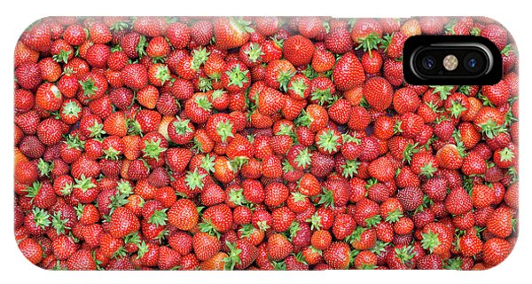 Blue Berry iPhone Case - Strawberry Fest by Tim Gainey
