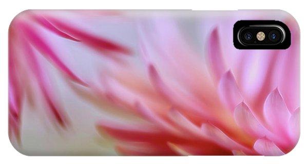 Golden Gardens iPhone Case - Strawflowers 2 by Veikko Suikkanen