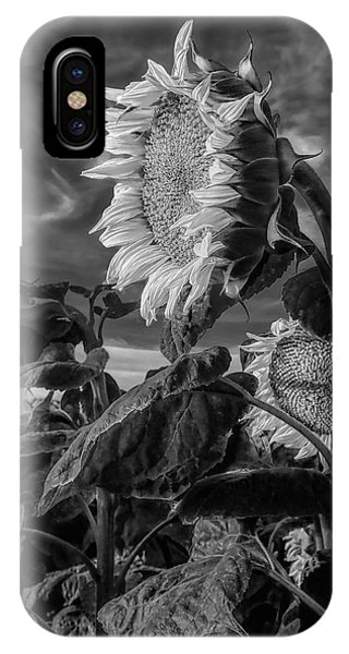 Strength Of A Sunflower IPhone Case