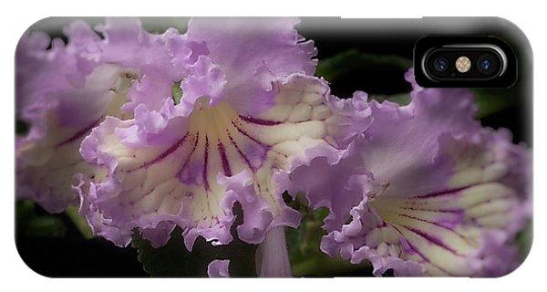 Streptocarpus 'renia' IPhone Case
