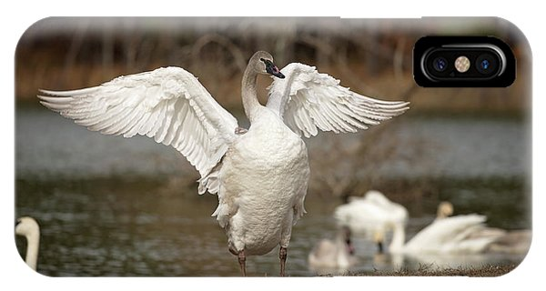 Stretch Your Wings IPhone Case