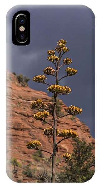 Stretching Into A Threatening Sky IPhone Case