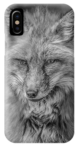 Striking A Pose Black And White IPhone Case
