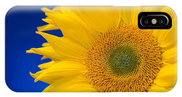 Striking Sunflowers IPhone Case