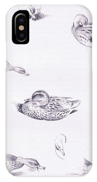 Mallard iPhone Case - Studies Of Mallard Ducks by Archibald Thorburn