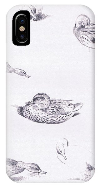 Studies Of Mallard Ducks IPhone Case