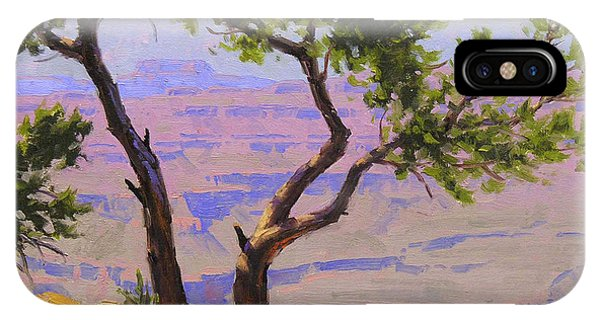 Grand Canyon iPhone Case - Study For Canyon Portal by Cody DeLong