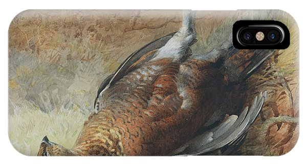 Mallard iPhone Case - Study Of A Grouse by Archibald Thorburn