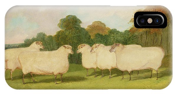 Sheep iPhone X / XS Case - Study Of Sheep In A Landscape   by Richard Whitford