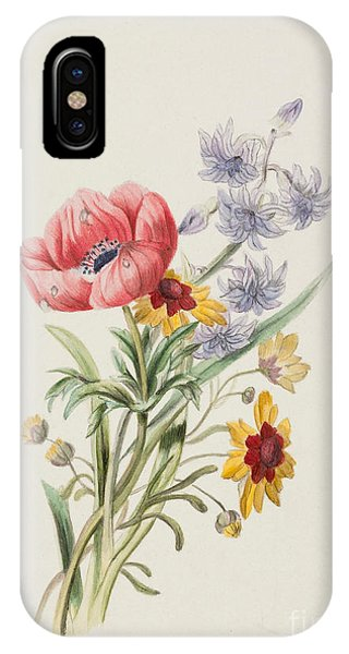 Elegant iPhone Case - Study Of Wild Flowers by English School
