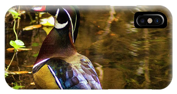 Stunning Wood Duck IPhone Case