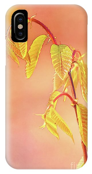Stylized Baby Chestnut Leaves IPhone Case