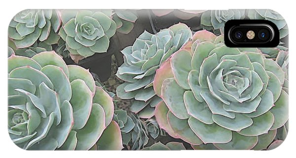 Succulent 2 IPhone Case