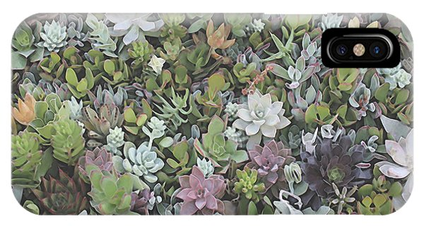 Succulent 8 IPhone Case