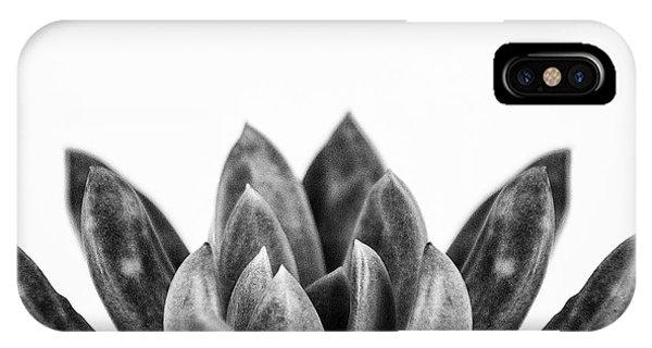 Succulent iPhone Case - Succulents Flowers Black by Ana Martinez