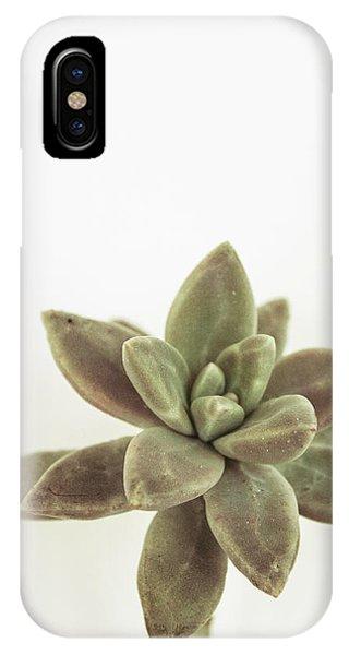 Succulent iPhone Case - Succulents Flowers Colour by Ana Martinez