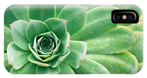 Succulents II IPhone Case