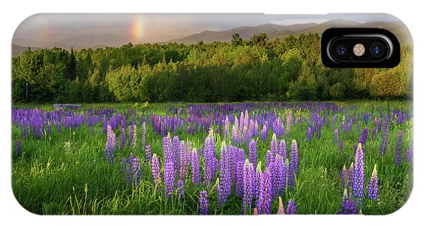 Sugar Hill Lupines IPhone Case