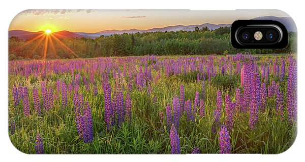 Sugar Hill New Hampshire Lupine IPhone Case