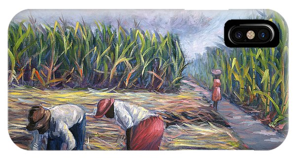 Sugarcane Harvest IPhone Case