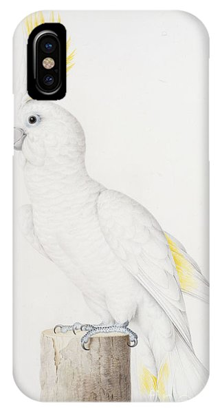 Sulphur Crested Cockatoo IPhone Case