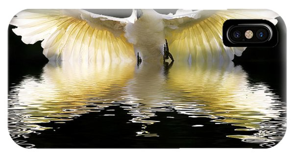 In Flight iPhone Case - Sulphur Crested Cockatoo Rising by Sheila Smart Fine Art Photography