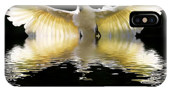 Cockatoo iPhone Case - Sulphur Crested Cockatoo Rising by Sheila Smart Fine Art Photography