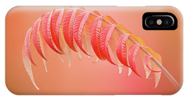 Sumac Branch IPhone Case