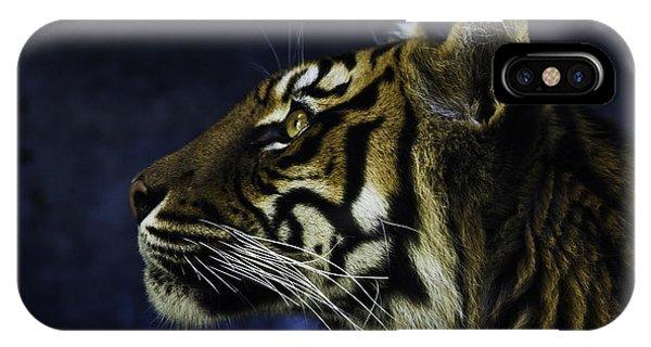 Big Cat iPhone Case - Sumatran Tiger Profile by Sheila Smart Fine Art Photography