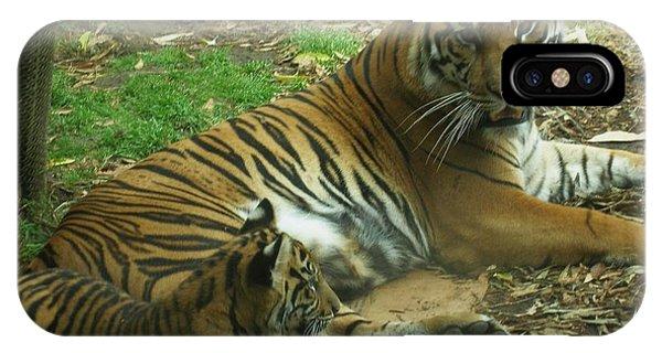 Sumatran Tigers  Phone Case by Travis Day