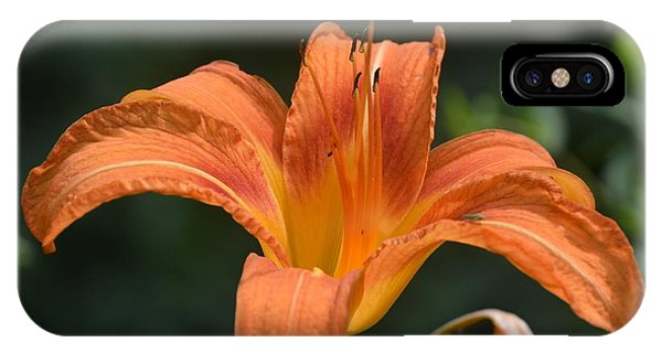 Summer Bloom-3 IPhone Case