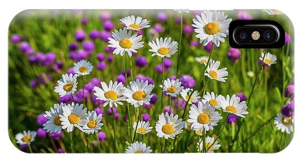 Salo iPhone Case - Summer Blooms by Veikko Suikkanen
