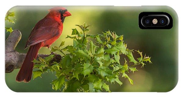 Summer Cardinal New Jersey IPhone Case