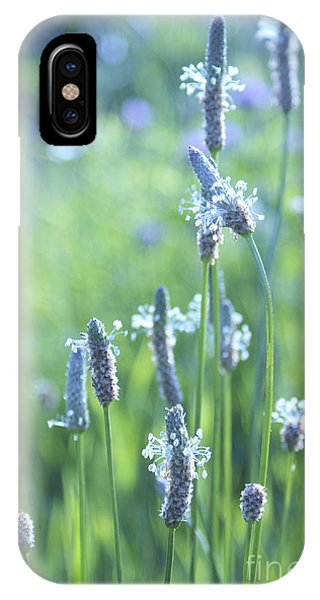 Summer Charm IPhone Case