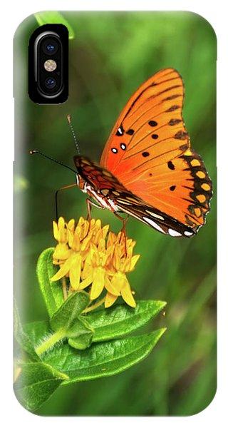 Agraulis Vanillae iPhone Case - Summer Delight by Betty LaRue