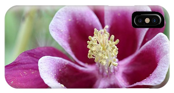 Summer Flower-2 IPhone Case