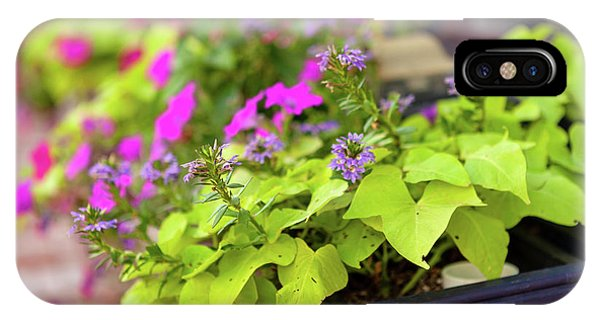 Summer Flowers In Window Box IPhone Case