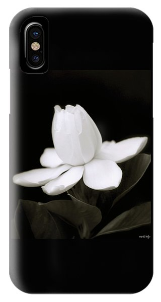 iPhone Case - Summer Fragrance by Holly Kempe