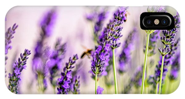 Honeybee iPhone X Case - Summer Lavender  by Nailia Schwarz